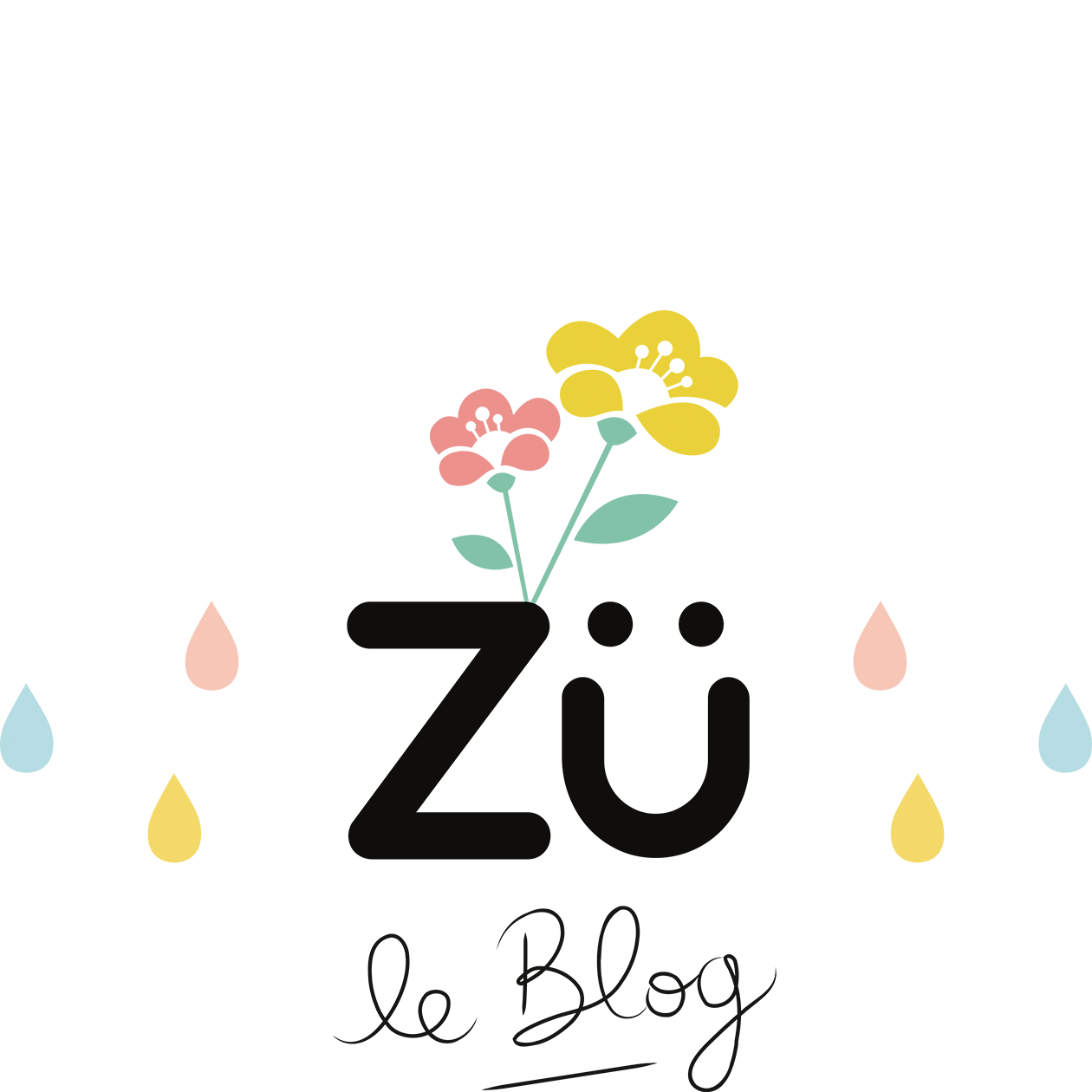 Zü – le Blog