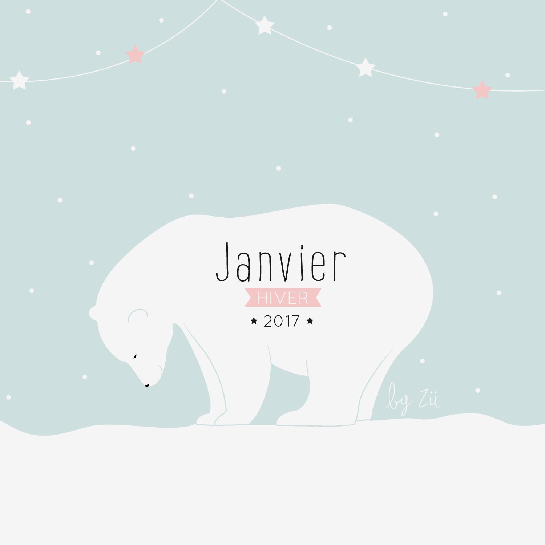 janvier-2017-zu